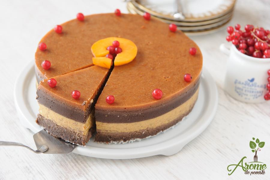 Tort raw de caise si ciocolata