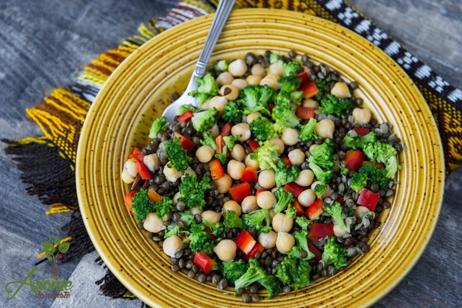 Salata cu linte neagra si naut (4)