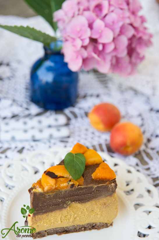 tort-raw-cu-ciocolata-si-caise