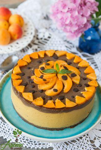 Solaris-tort-raw -caise-si ciocolata