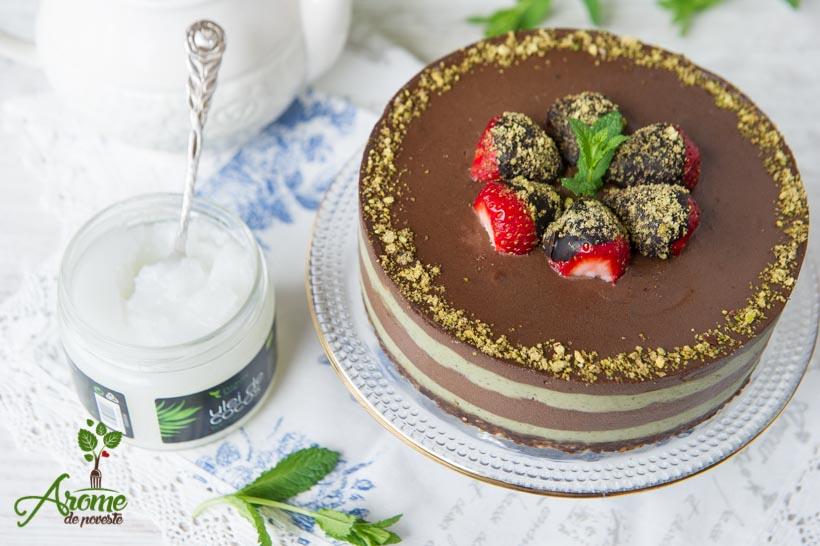 Tort raw cu ciocolata si menta (60)